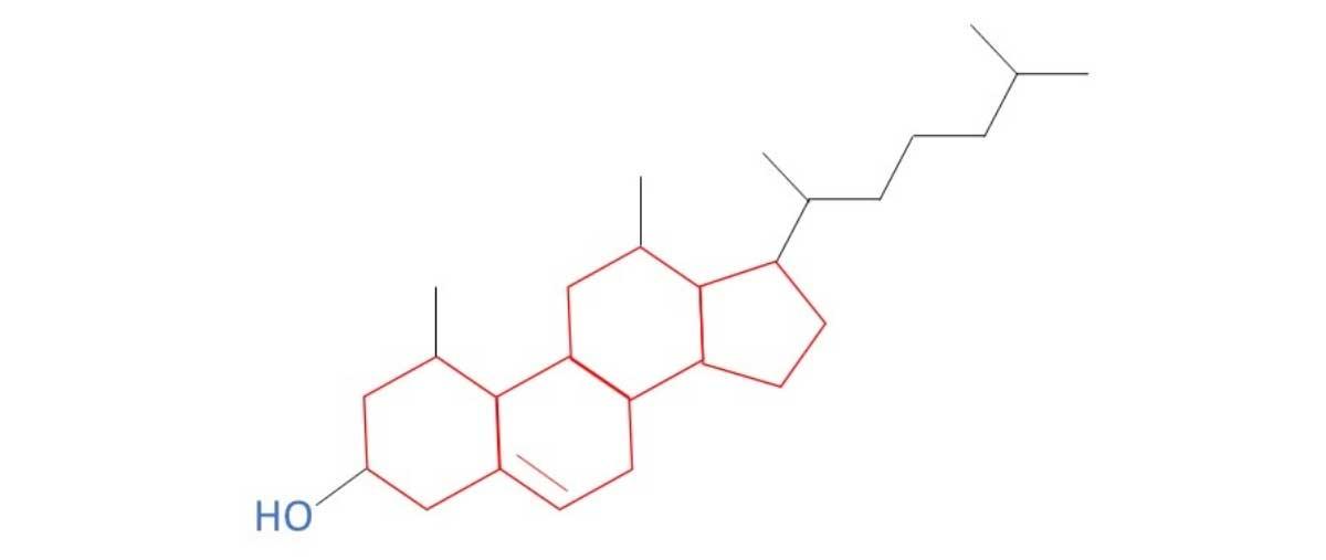 Cholesterin Strukturformel